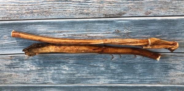 Ochsenziemer XXL ca. 100cm mit Fleischknubbel 1x geschnitten