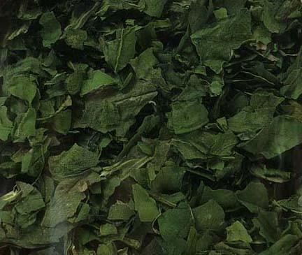 Spinatblätter